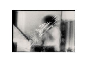Trombone-Tom-Plsek
