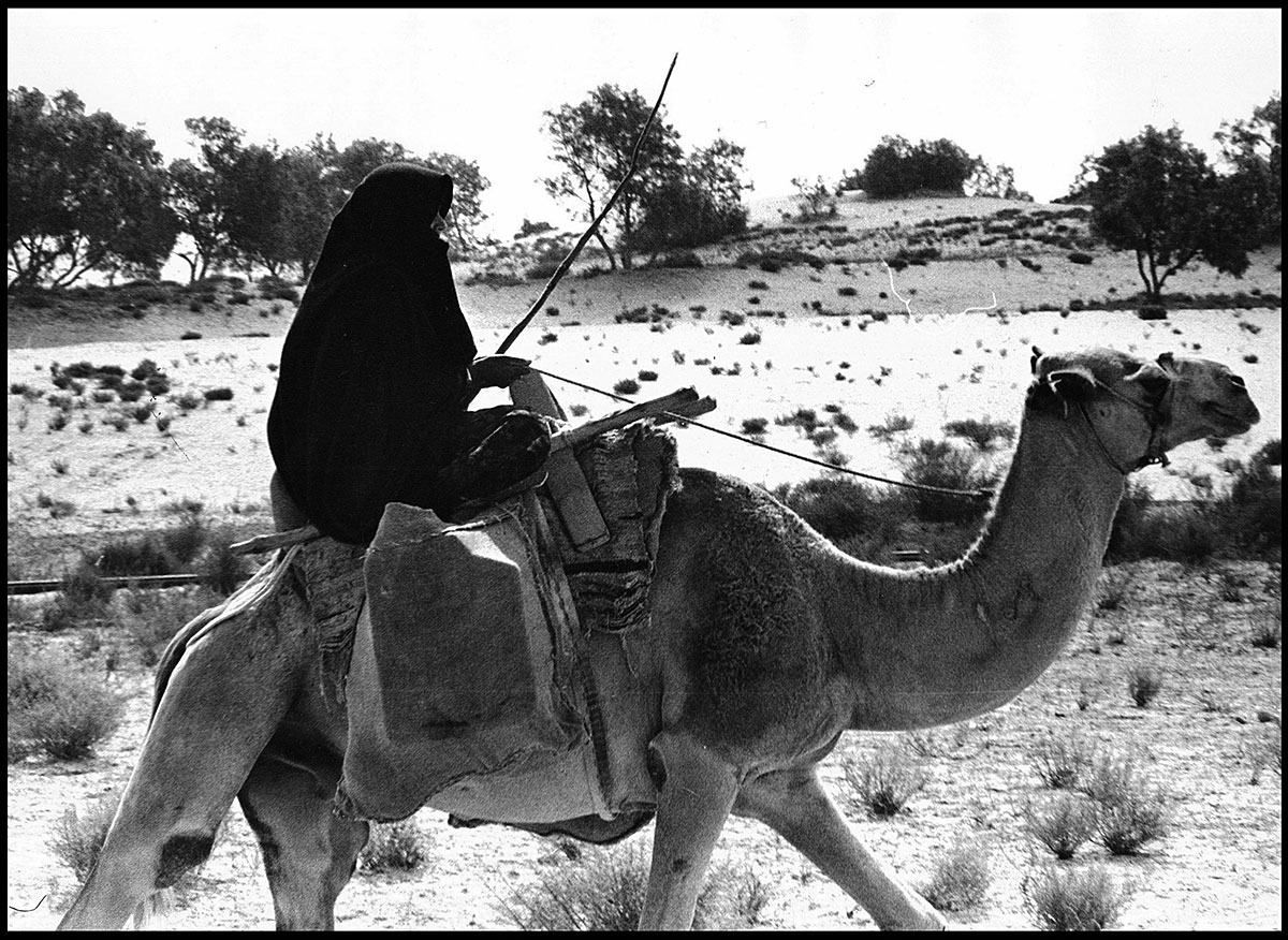 woman-on-camel